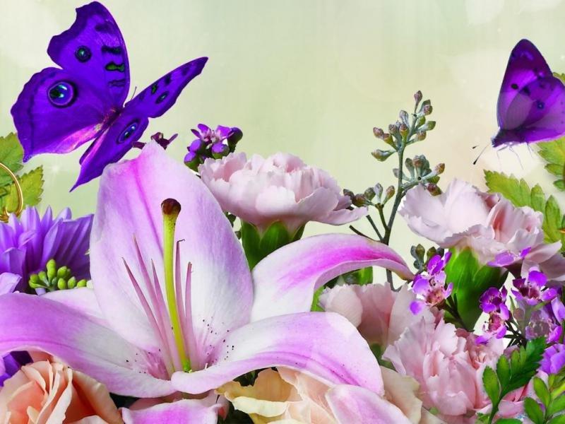 Кургане, открытка с красивыми цветами и с бабочкой
