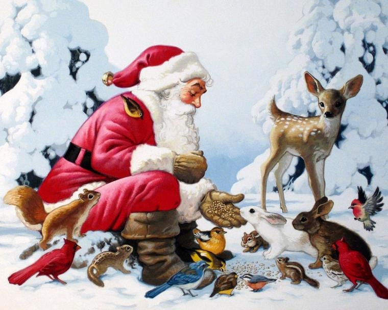 Смешные ники, животные новогодние открытки