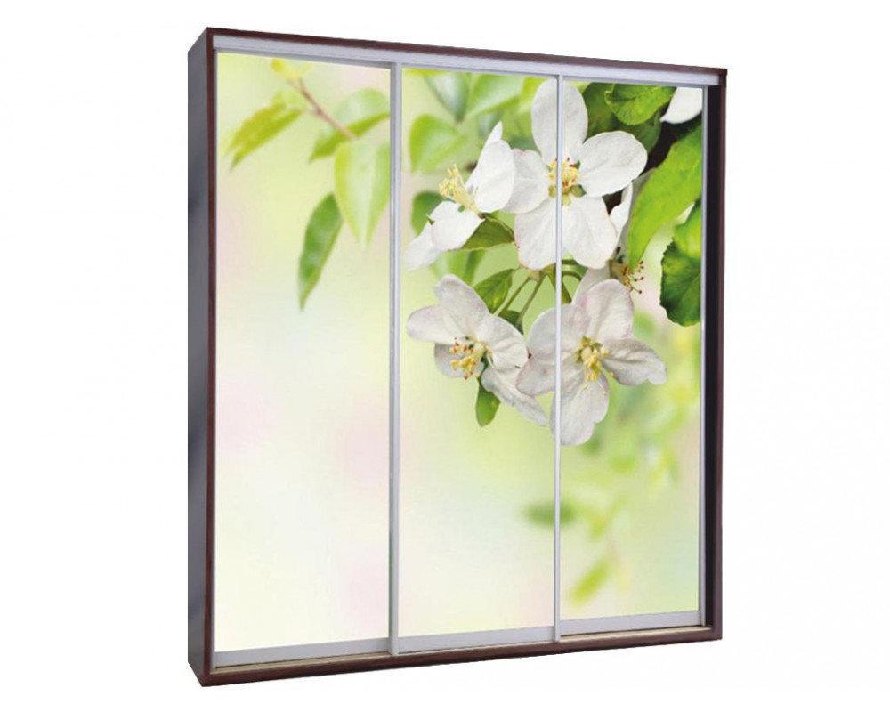 красивые картинки для фотопечати на стекле стоит
