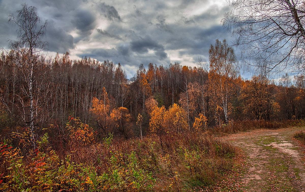 Хмурая осень.