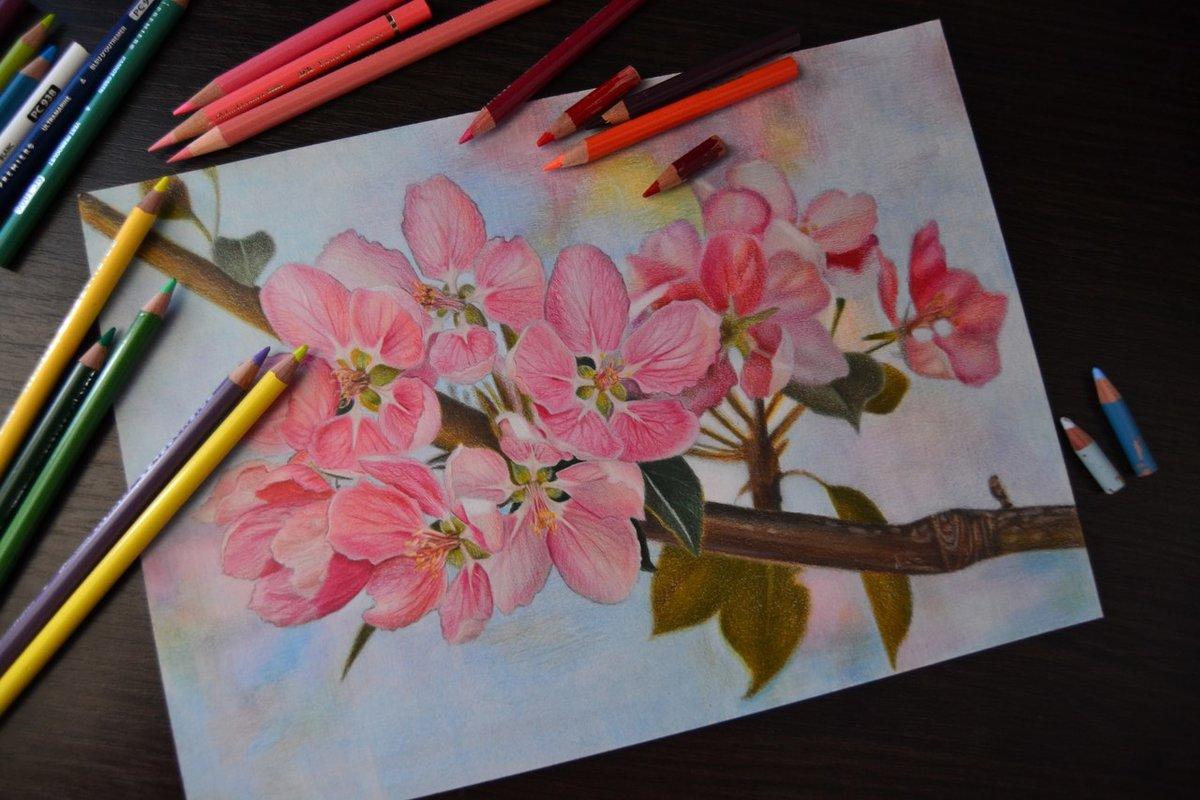 красивые картинки своими руками нарисовать цветными карандашами