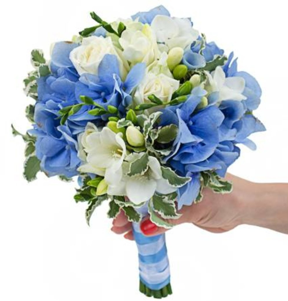 Букет из синей фрезии, букет цветов доставкой