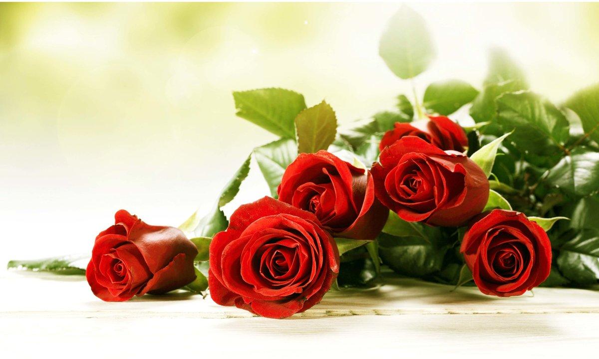 Любимому, плейкаст с днем рождения цветы открытки