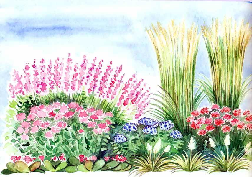 Открытки клумбы с цветами, венчанием