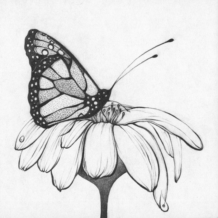 залу примыкает картинки как рисунки черно-белые дэвида
