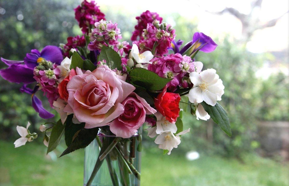 Картинка с очень красивыми цветами