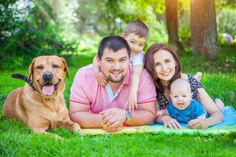 Серия семья в картинках