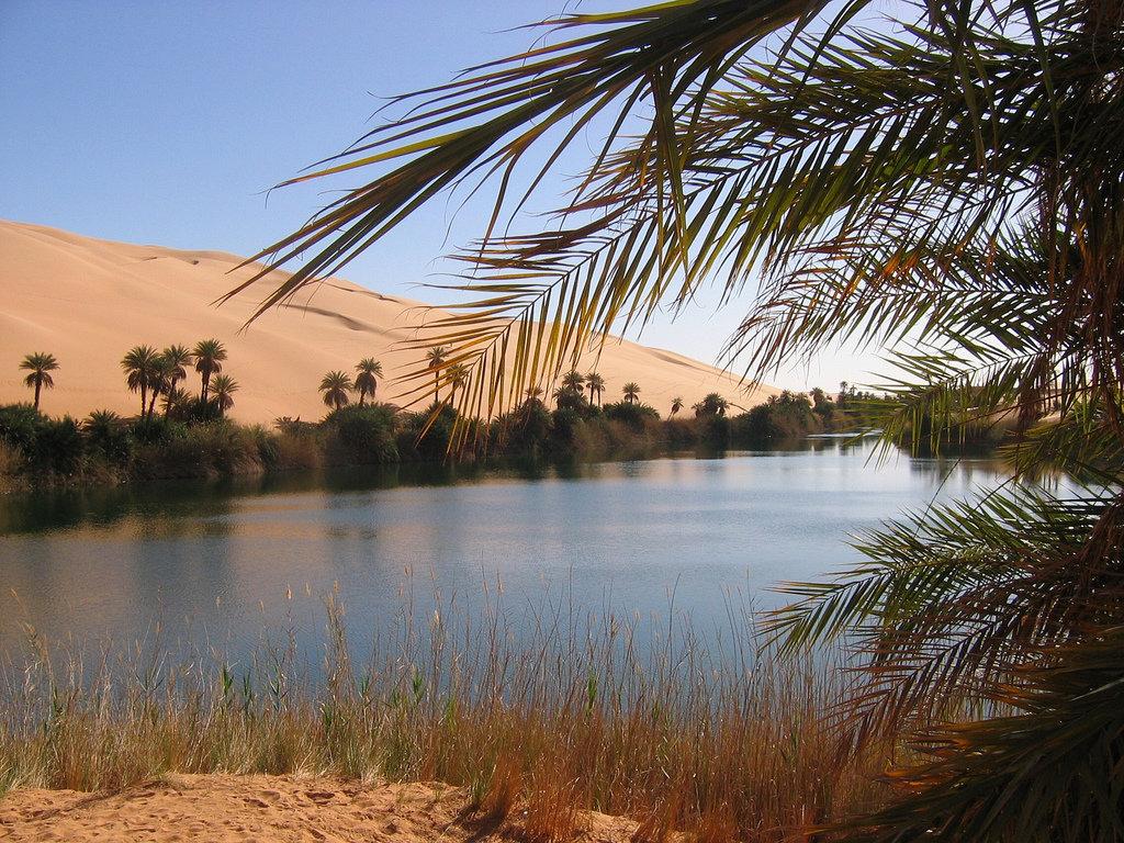 пейзаж пустыня оазис фото ссылкой друзьями