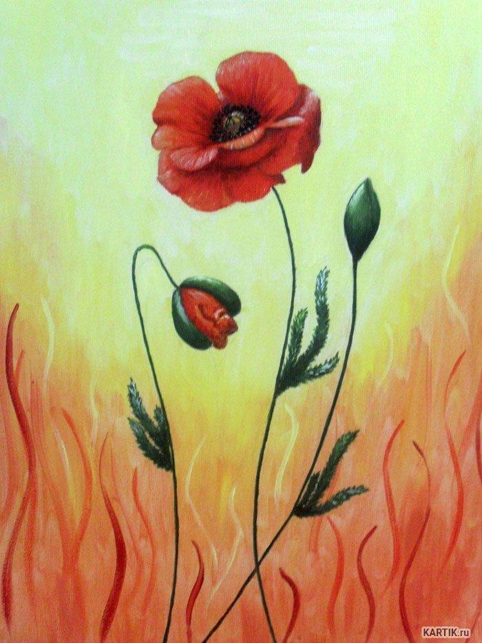 Картинки для срисовывания красками поле с цветами