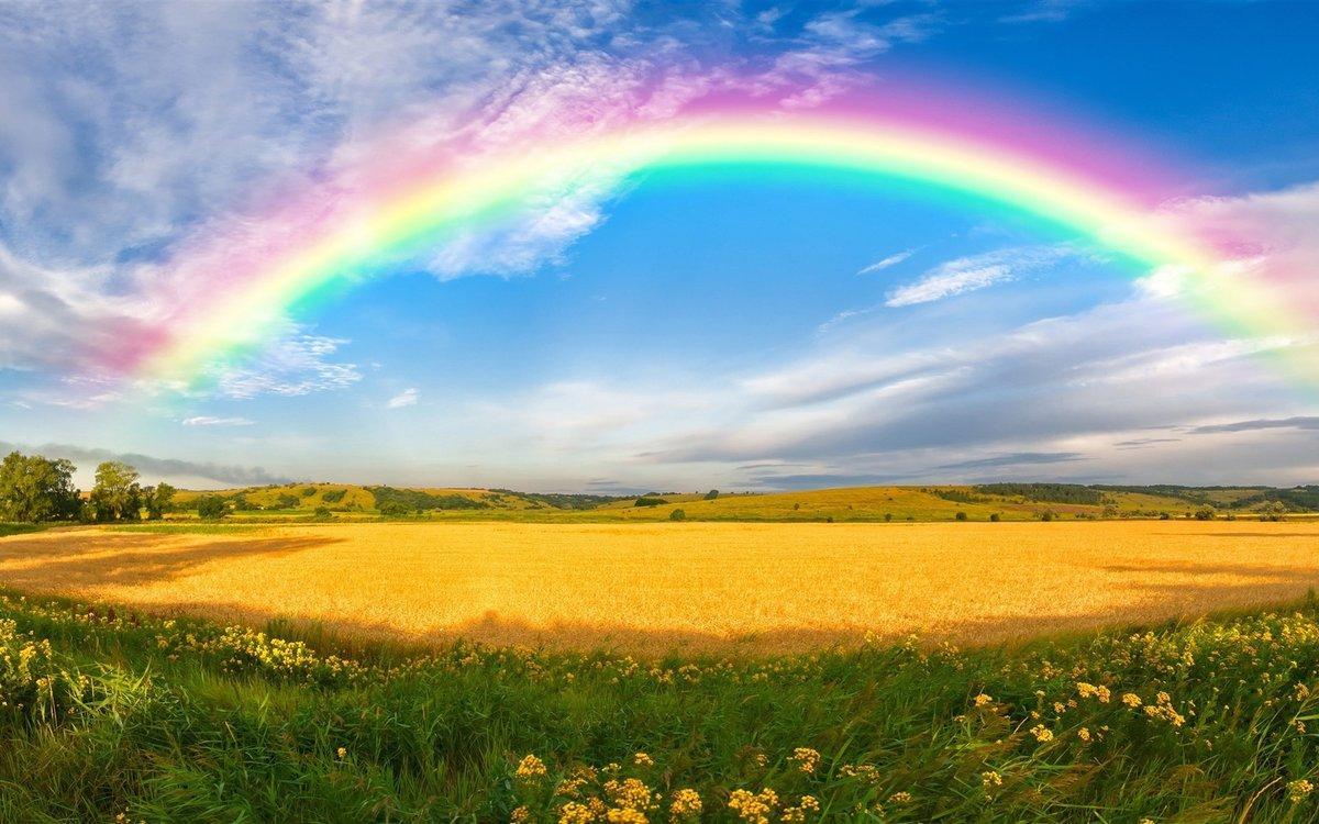 Открытки с радугой в поле, выздоравливай скорее подруге