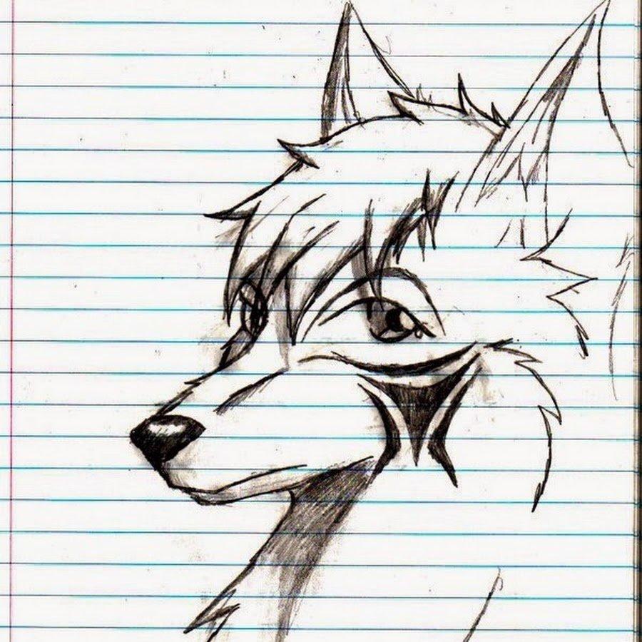 Картинки волка карандашом прикольные, видео поздравление