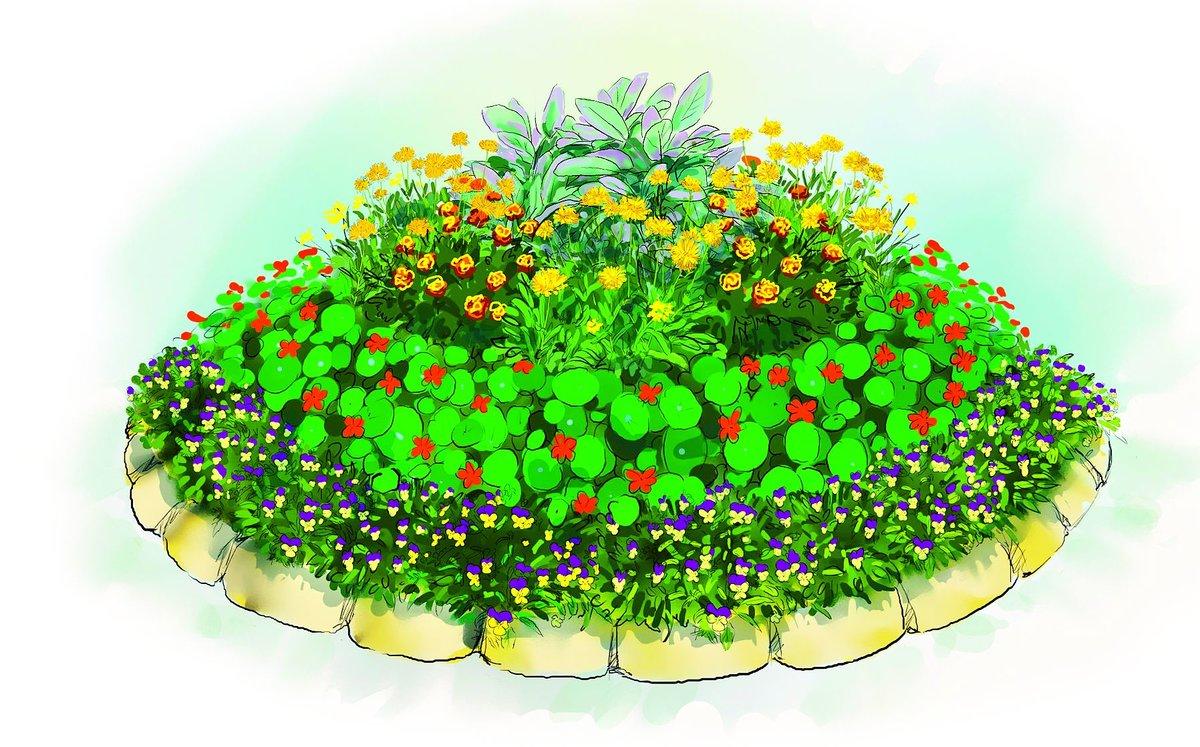 Открытки клумбы с цветами, днем