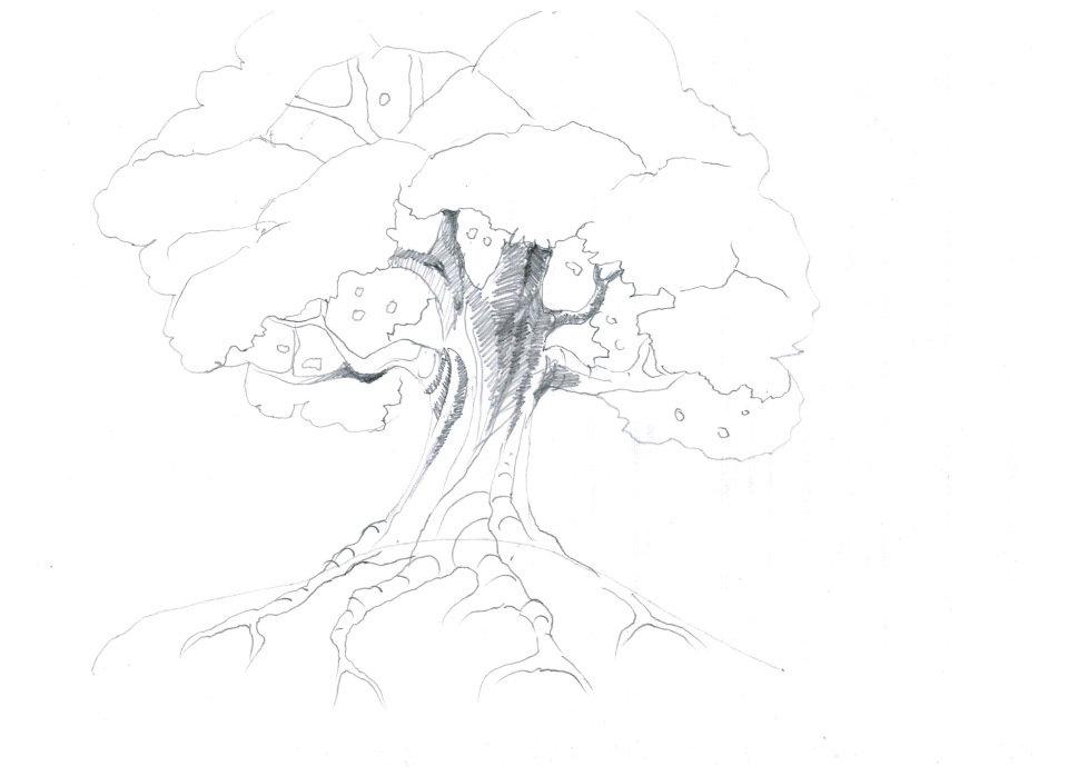картинки как рисовать дуб трудно