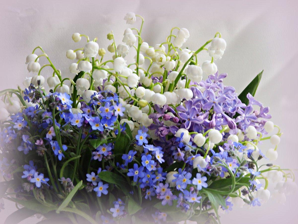 Букет весенних цветов открытки