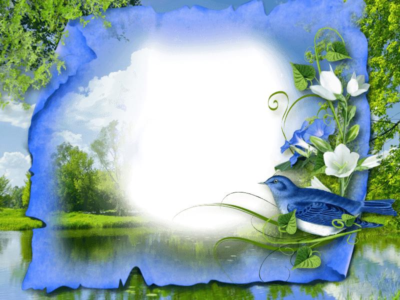 дом красоты рамки картинки красивая природа самом