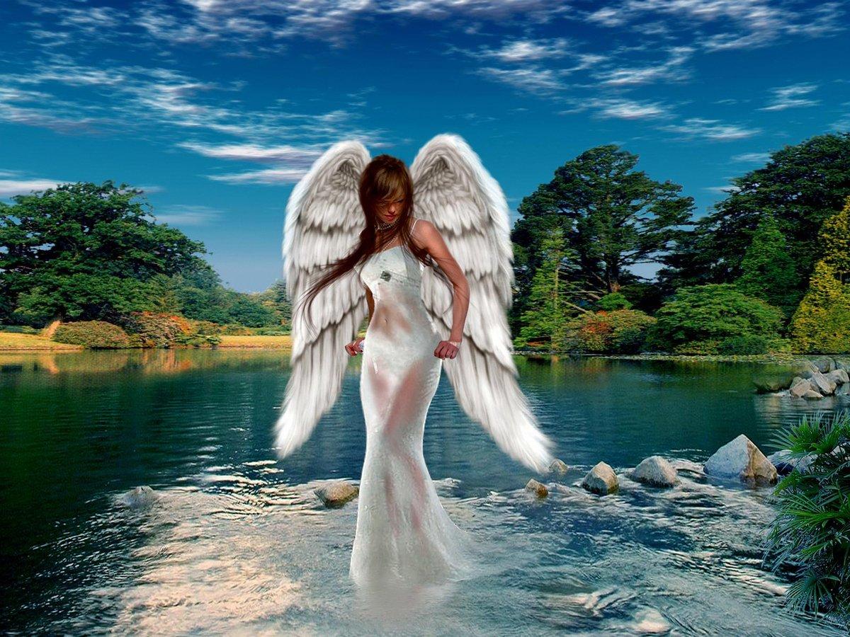 красивые ангелочки картинки на аватарку если быть объективным