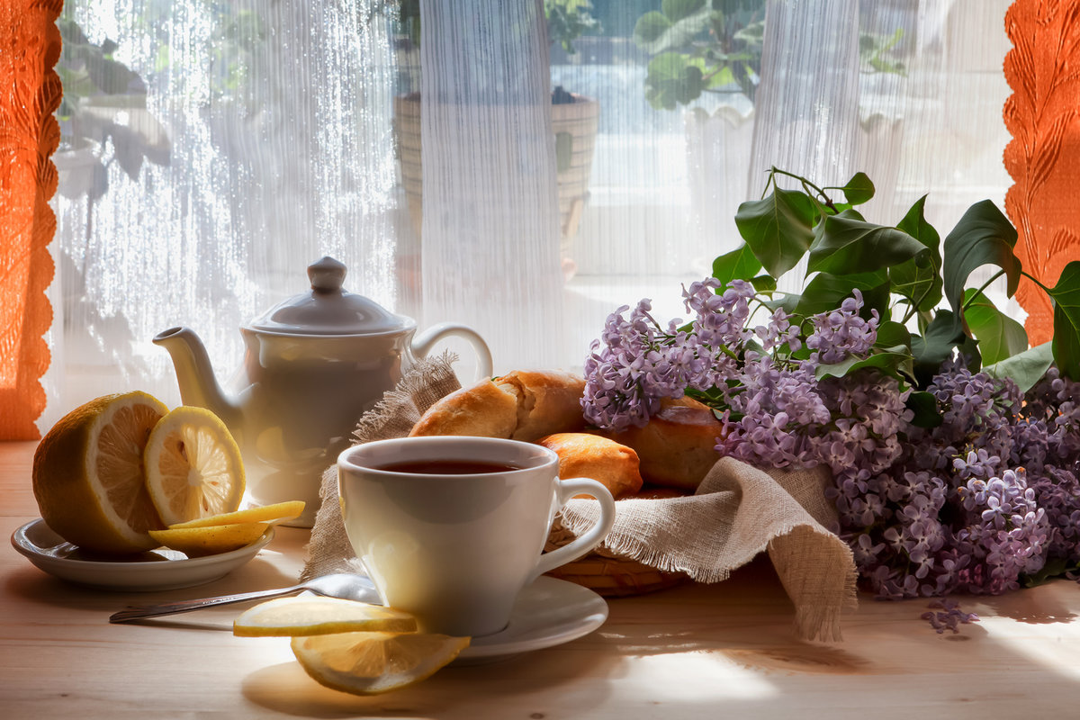 панина красивая бодрого утра весной фото услугам гостей