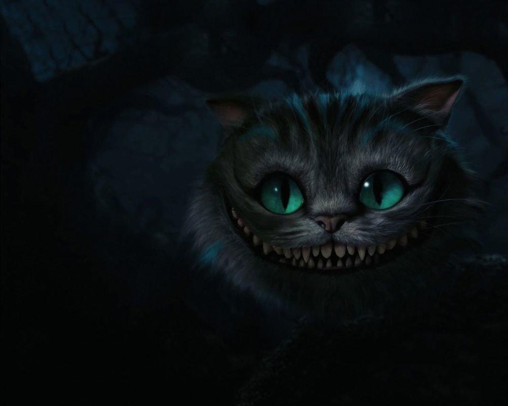 она носит фото кота из алисы в стране вам