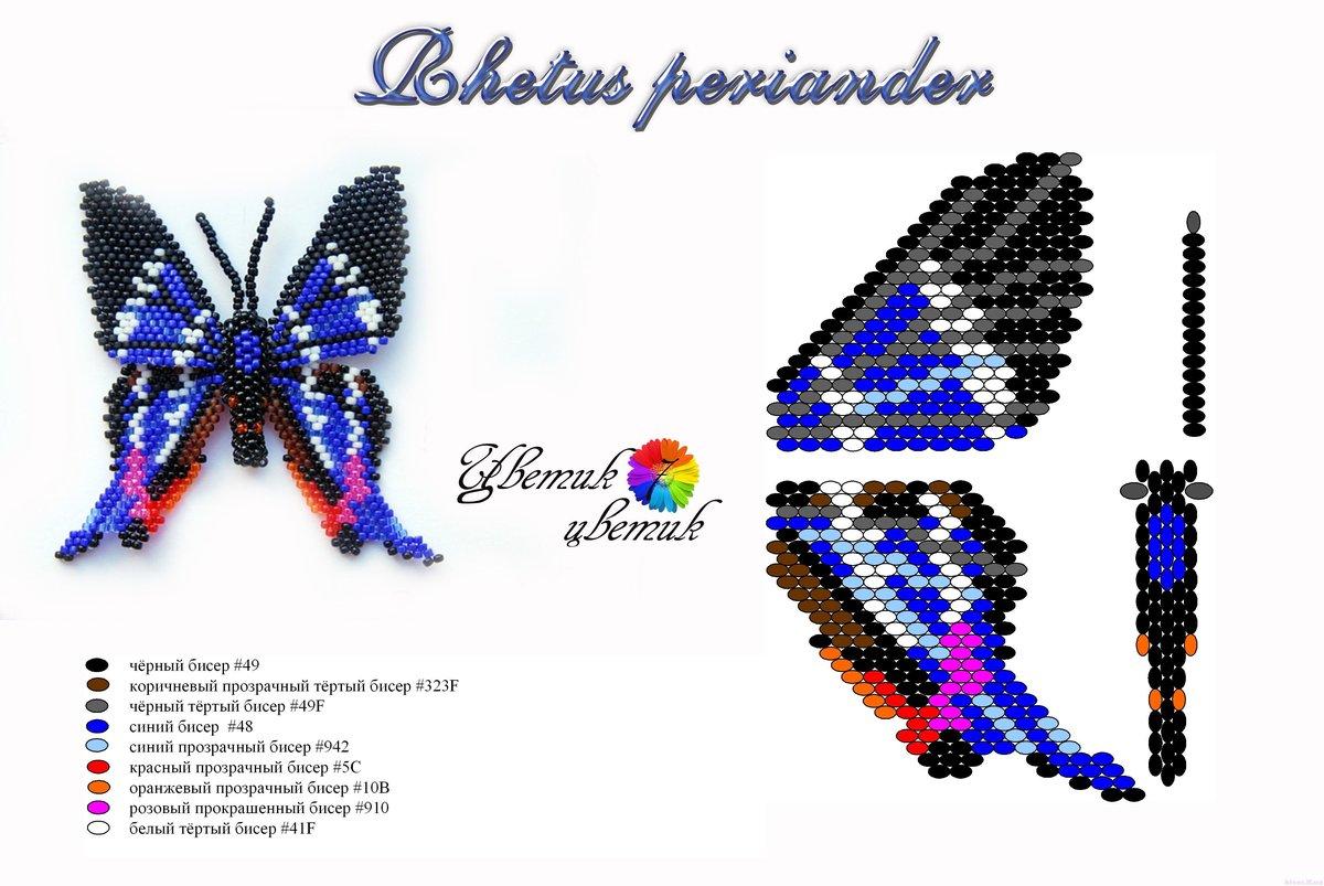 только схема из бисера бабочка самцы