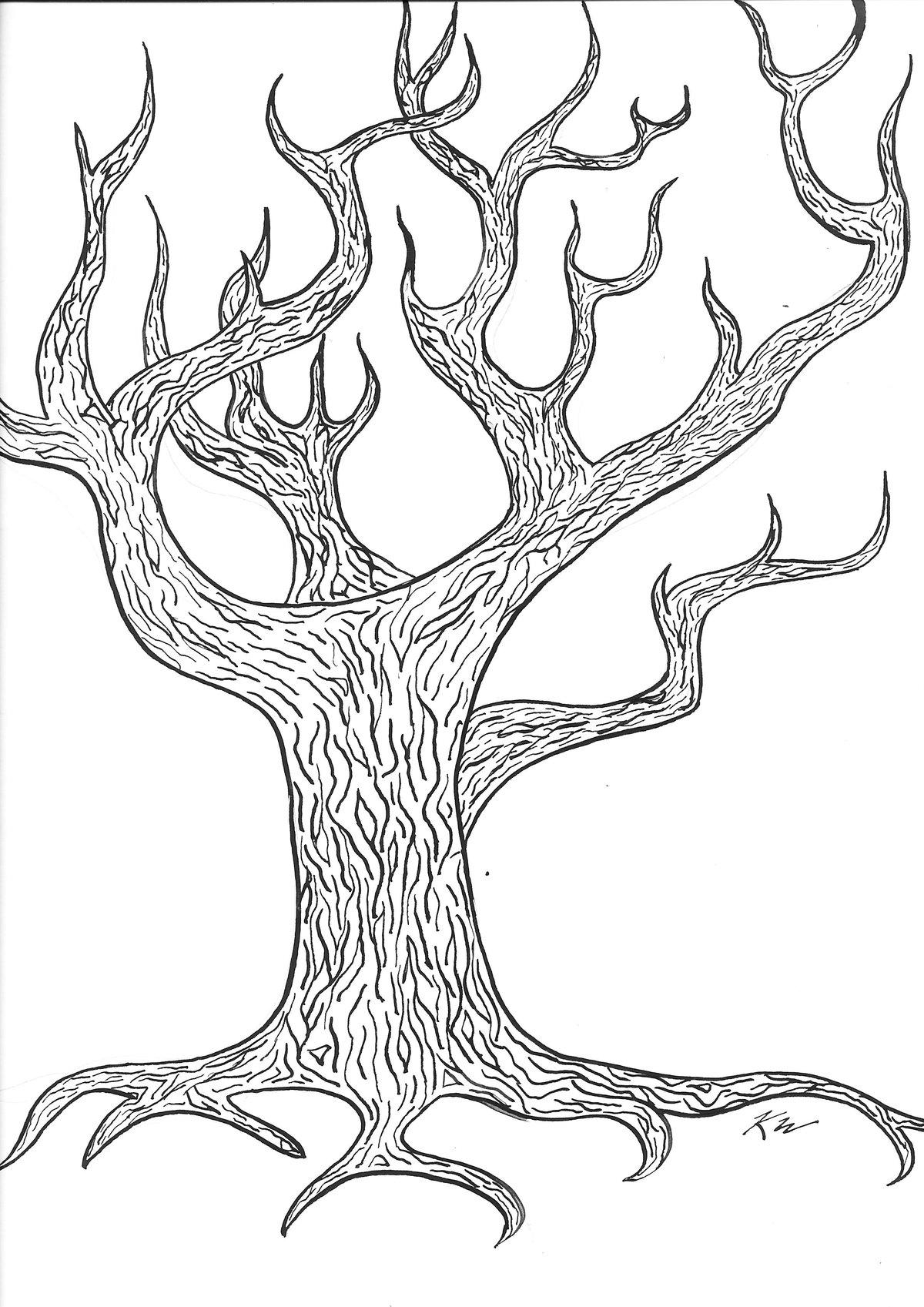 картинки как рисовать дуб замечательное место для