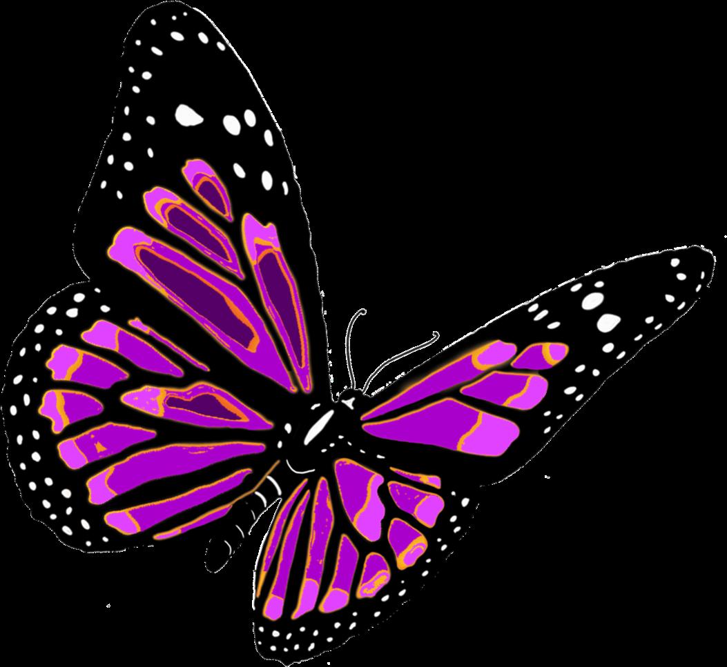 Бабочки картинки на прозрачном фоне, открытки днем