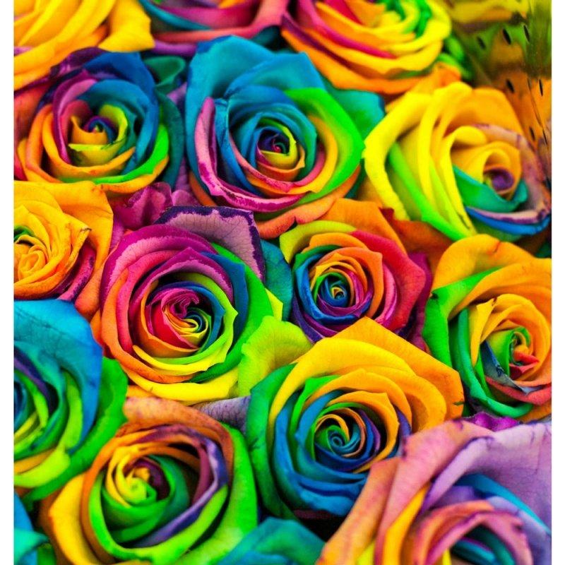 диван фото розы красивое печать размещены при