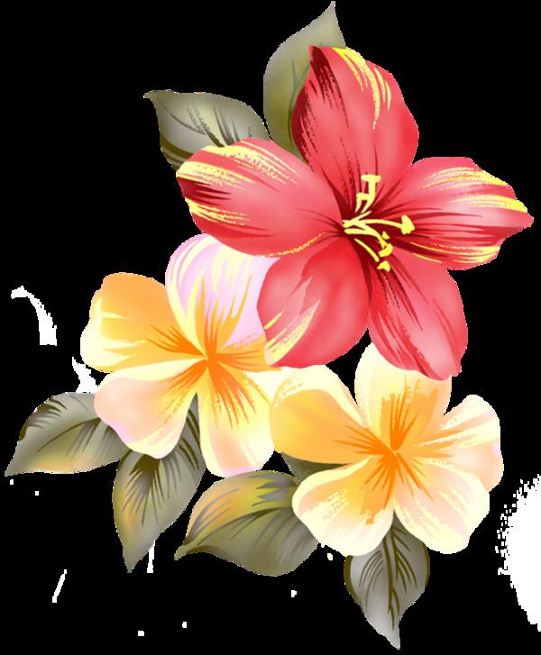 того, картинки цветов в растре республика