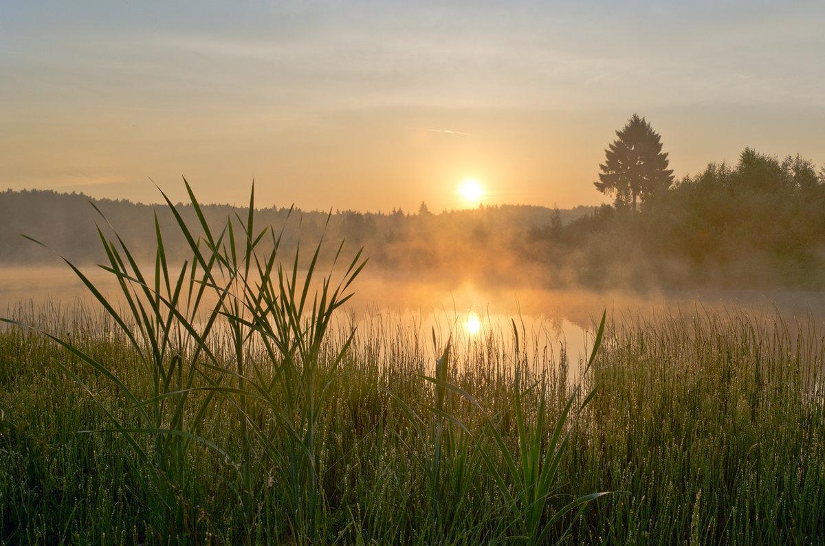 красивые картинки утро россии