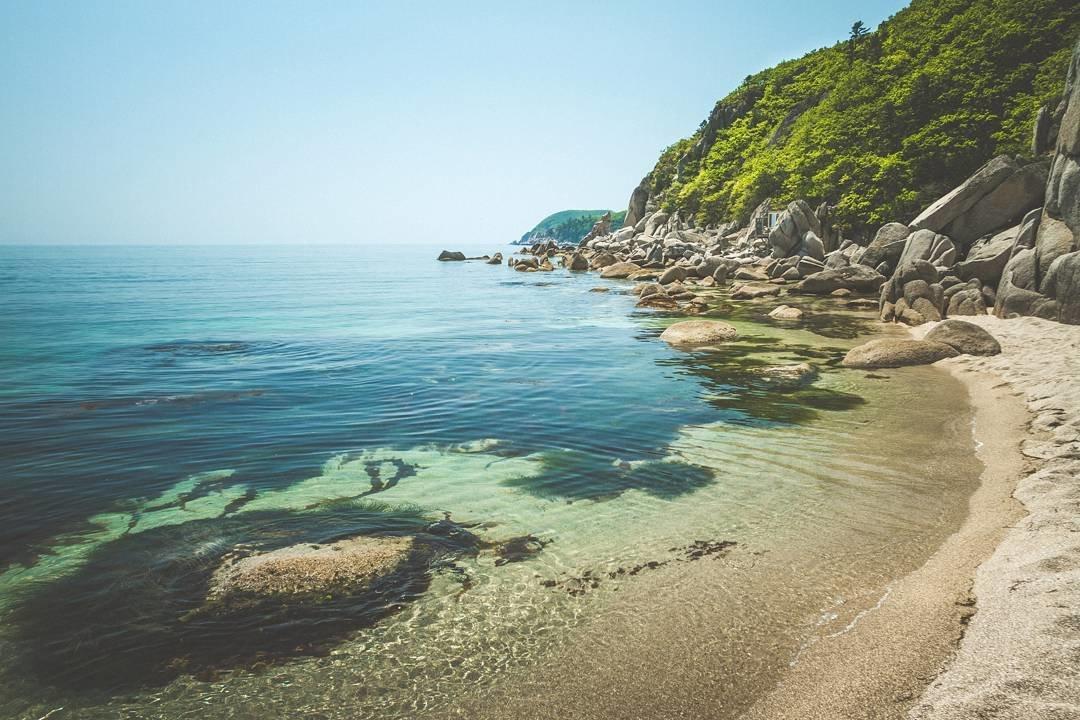 фотографии из дикого пляжа больше случаев