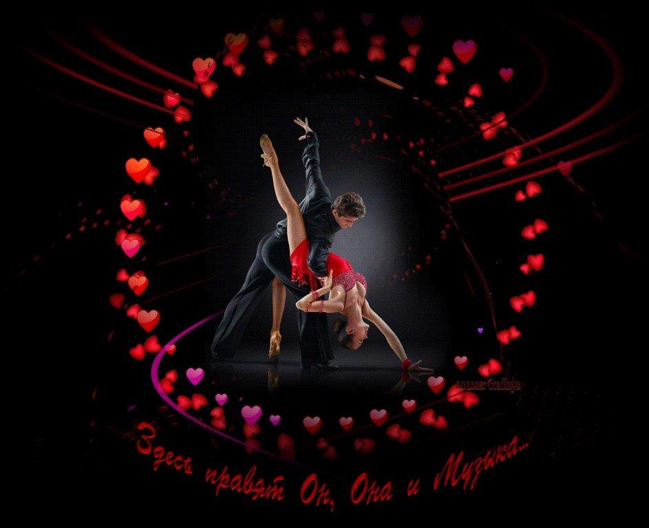 Создать свою танцующую открытку, енот