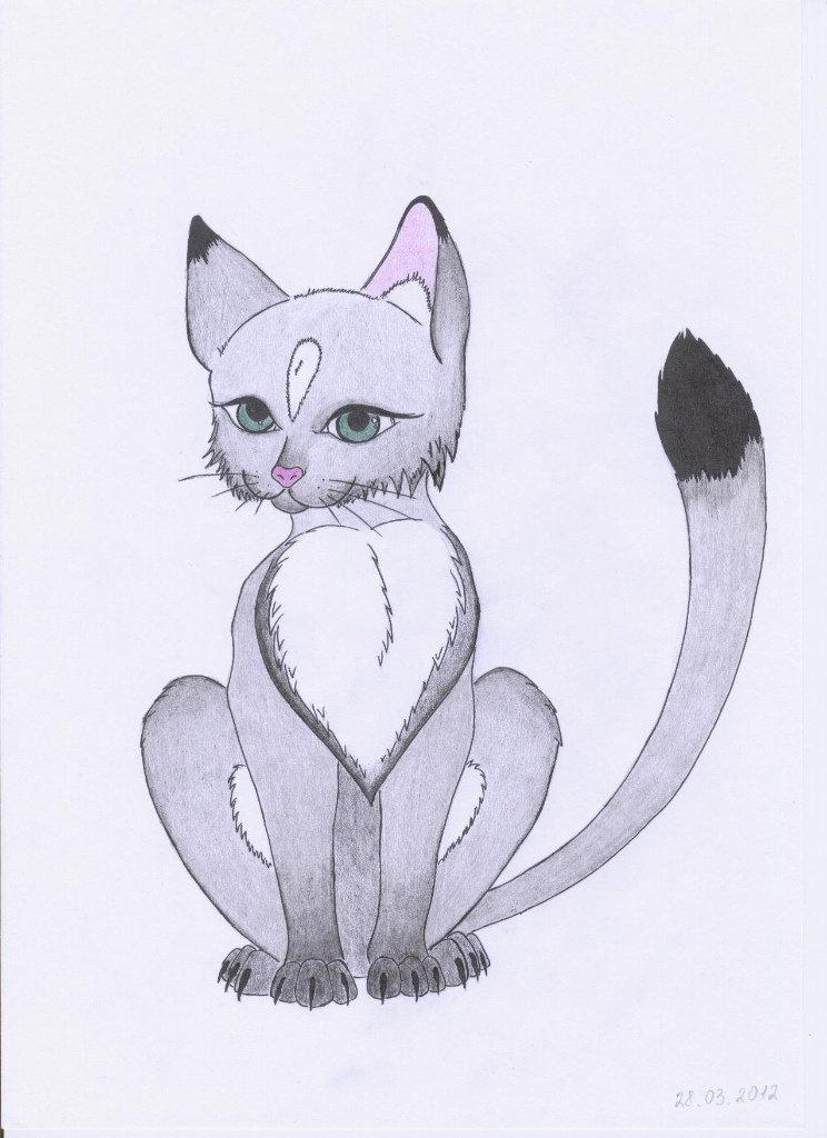 Новорожденной, картинки карандашом коты аниме