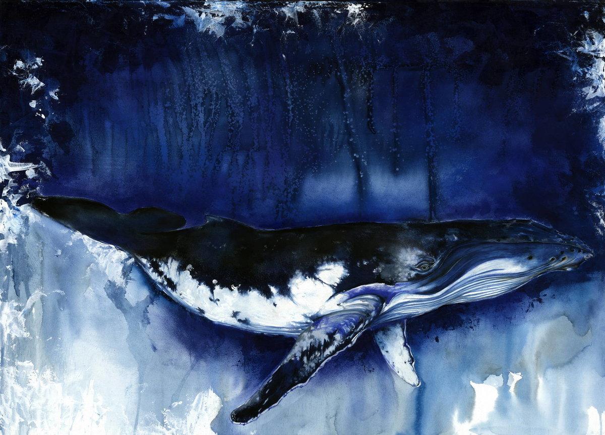 временем картинки и рисунки китов знаю