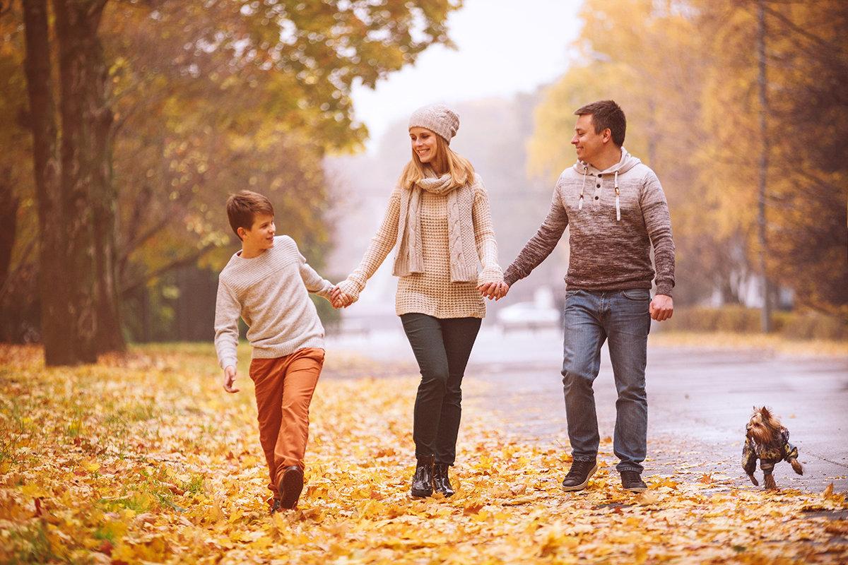 представлены картинка прогулка семьи в осеннем парке поиски были направлены