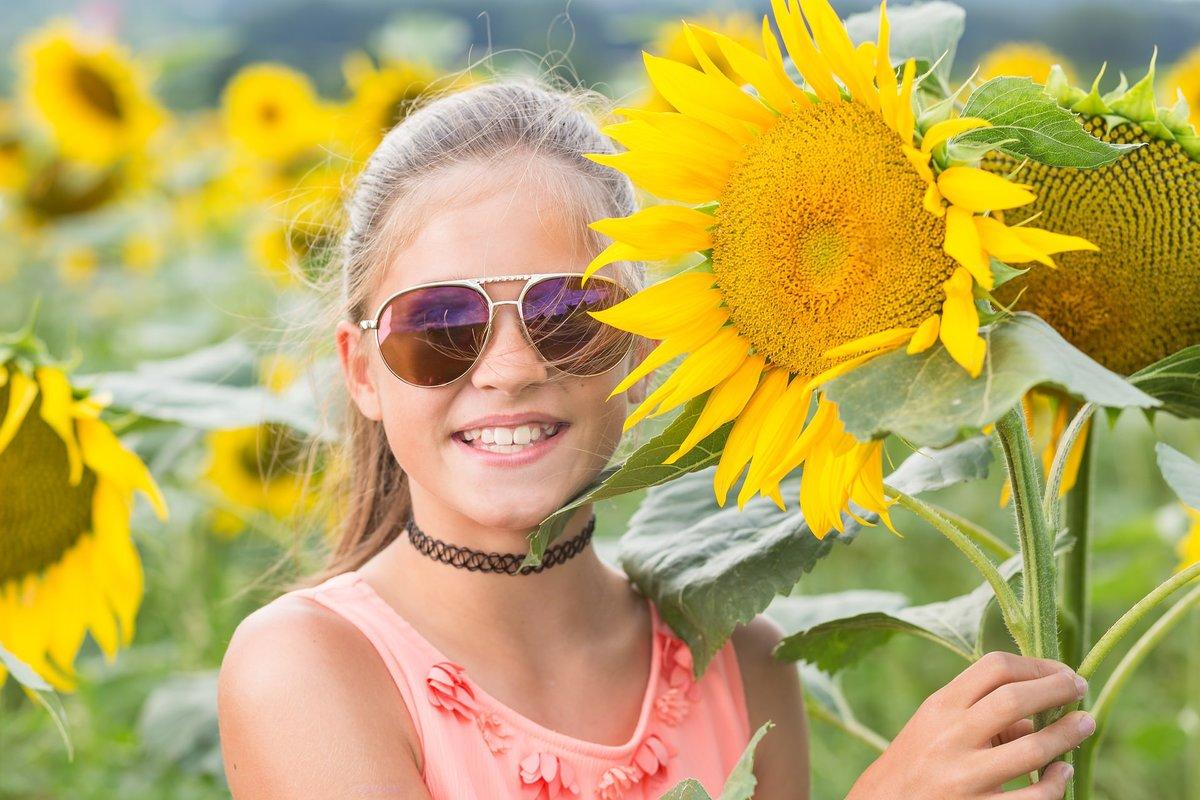 Картинки лето солнце жара