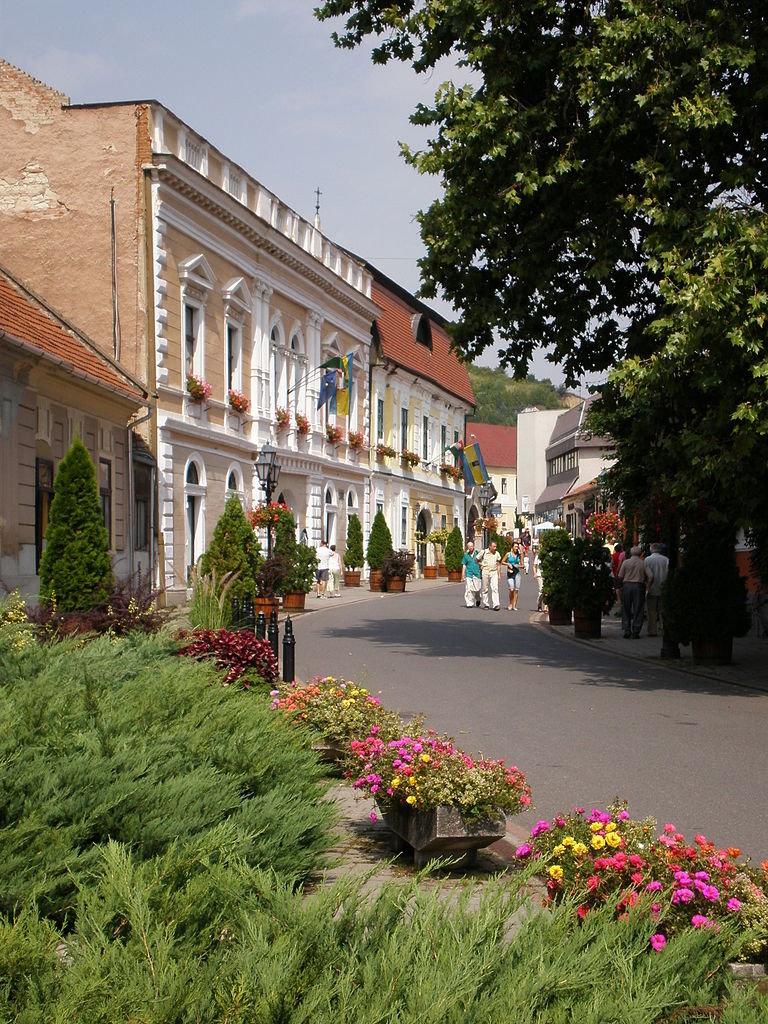 город токай венгрия фото описание каждого