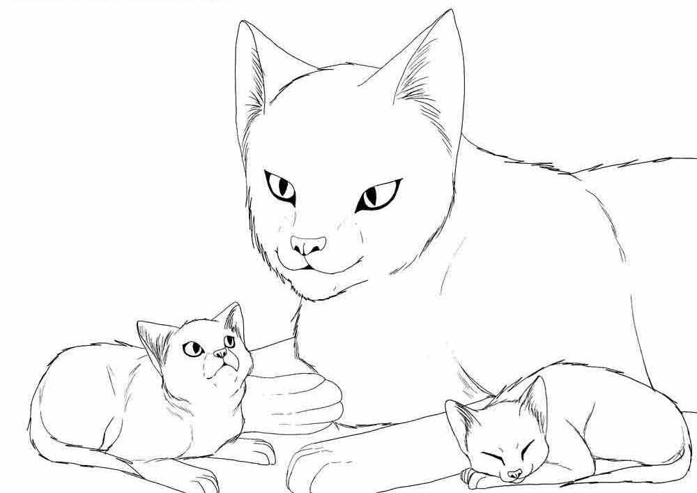 Рисунки кошек и котят, днем