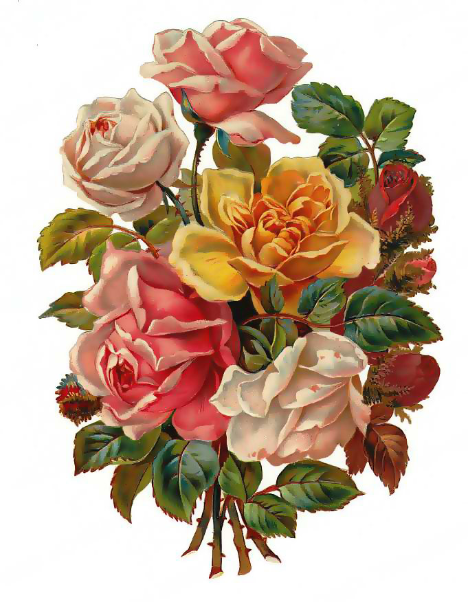 Цвета на открытках нарисованные