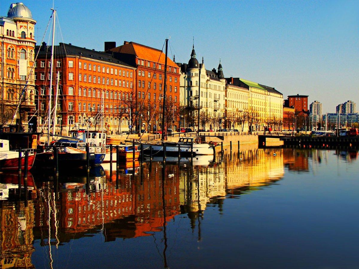 Животные картинки, картинки хельсинки финляндия