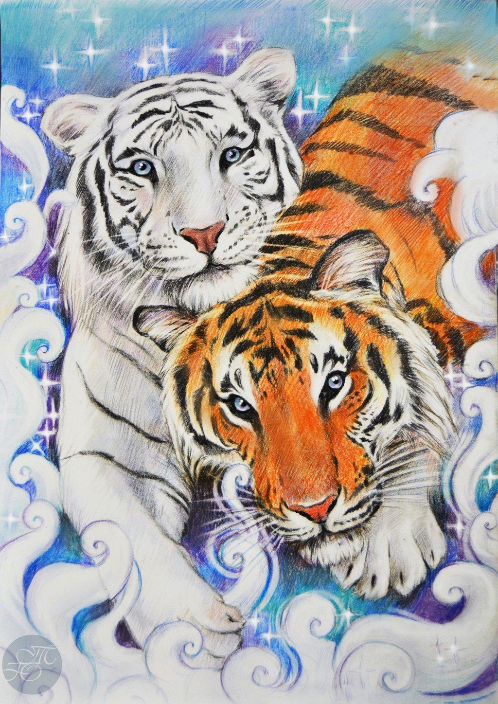 картинки тигров и тигрят карандашом рассказывал журналистам, что