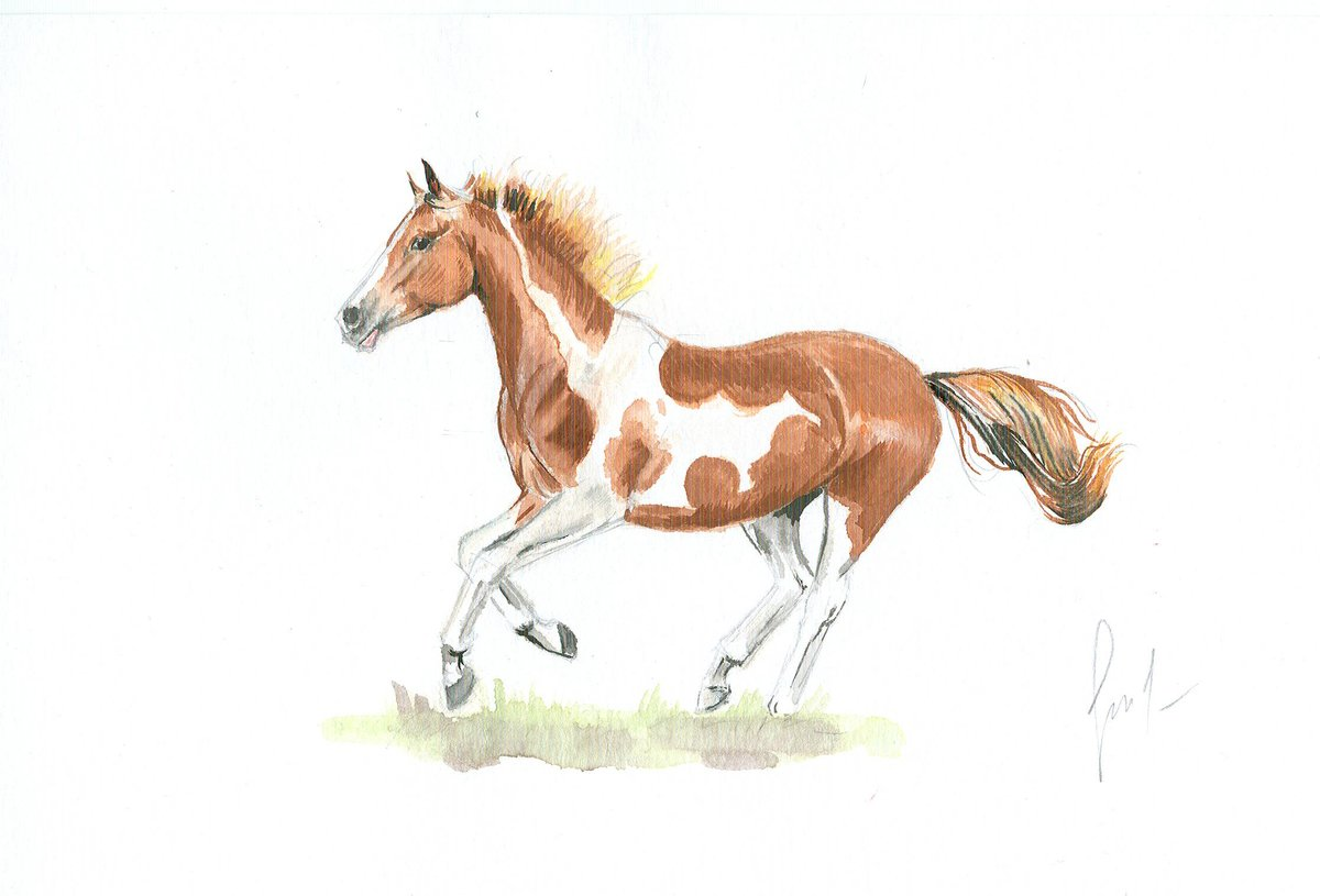 Нарисованный лошадь картинки
