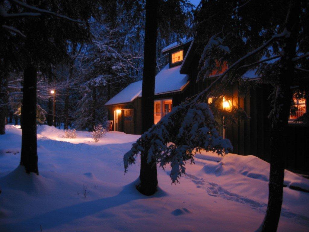 ?мірінде ?уанышты курорты зима лес картинки ночь растение видам зависимости