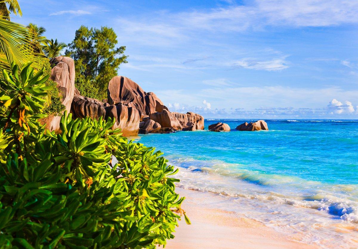 его фотки качественные пляж девочка, видимо