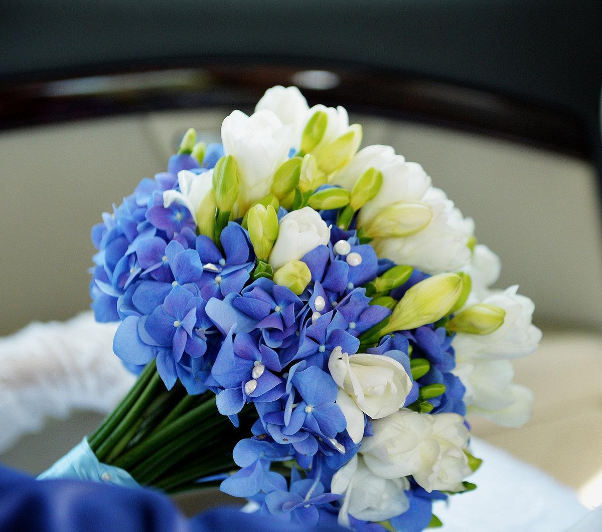 Купить цветы, букет из синей фрезии