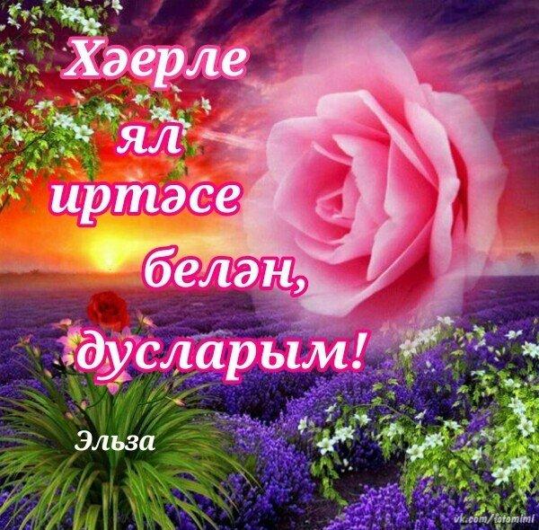 поздравить с добрым утром картинки на татарском домов коттеджей