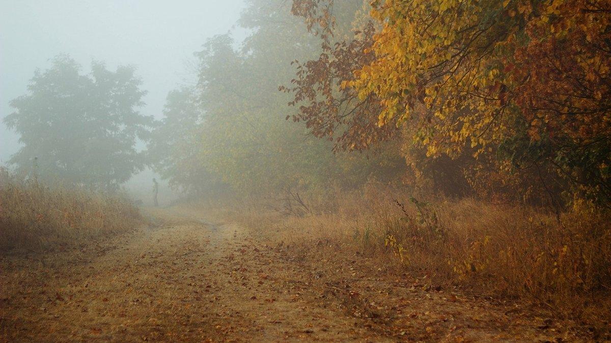 Своим происÑождением наземные облака далеко не всегда обязаны лишь природе: большое число туманов возникает в городаÑ, а потому состоят они не только из капель и пыли, но также дыма, копоти, которые выбрасываются фабричными или печными трубами, или возникают после или во время пожаров, когда горит лес, торф или степь.