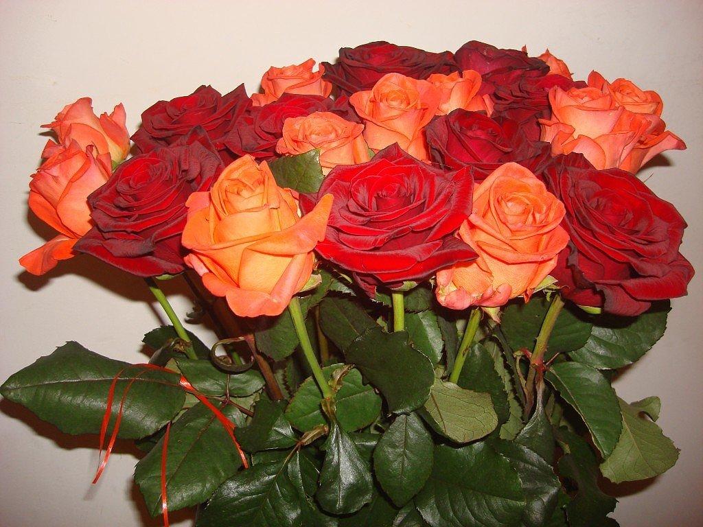 Открытки с цветами с надписями для друзей, днем