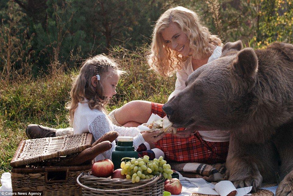 картинка встреча с медведем