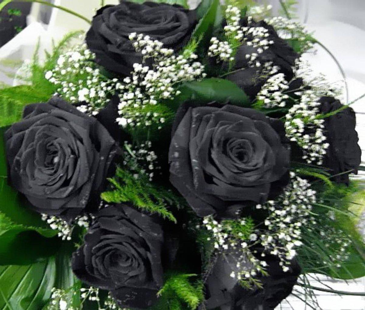 Красивые букеты роз черные