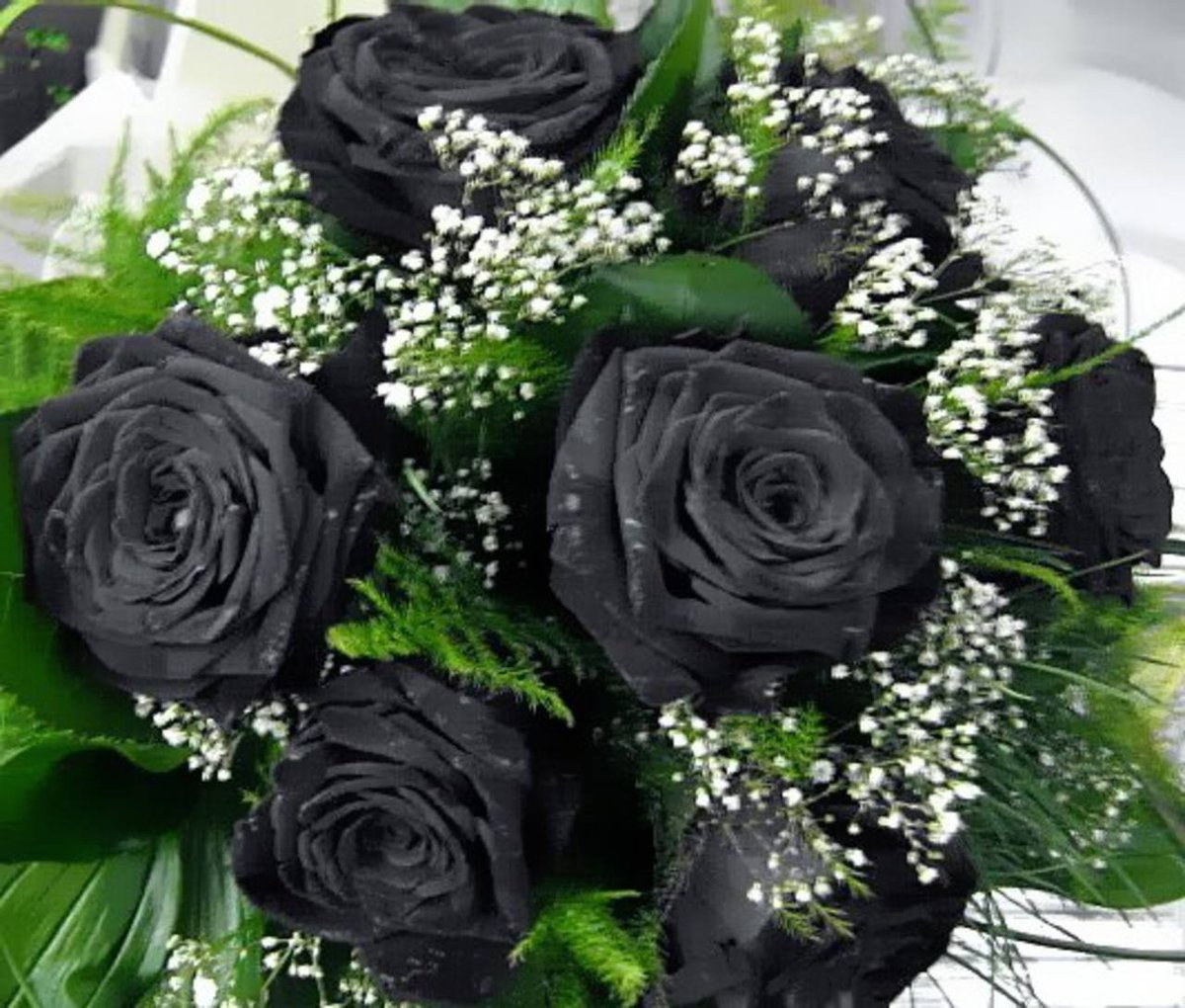 Alabama babe black end bouquet moves the