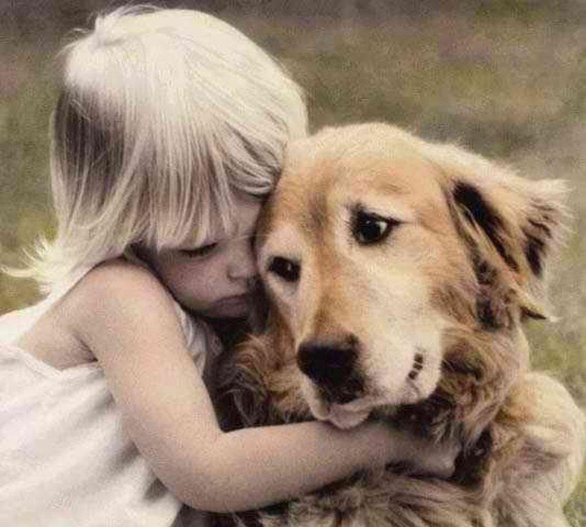 Февраля, картинки сострадание для детей